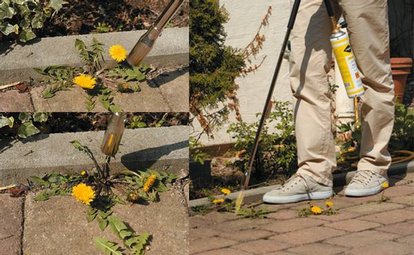 Bilde av Mesto Thermo-Gardener